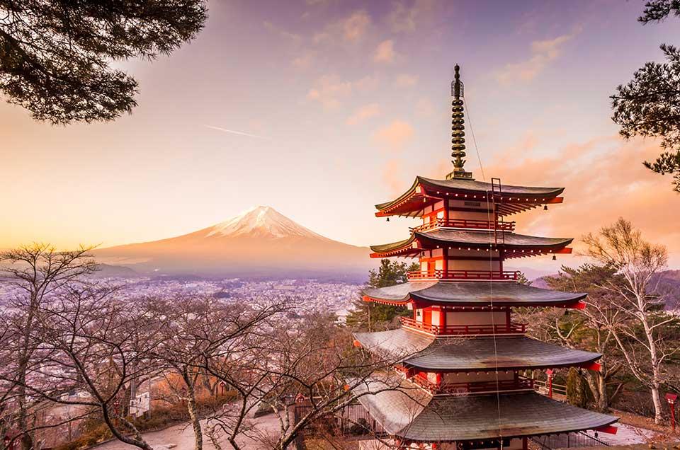 Resultado de imagem para japao tours